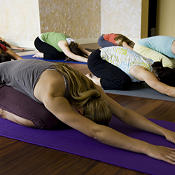 class of people in childs pose on yoga mats